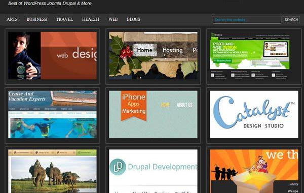 cms Website Design Showcase