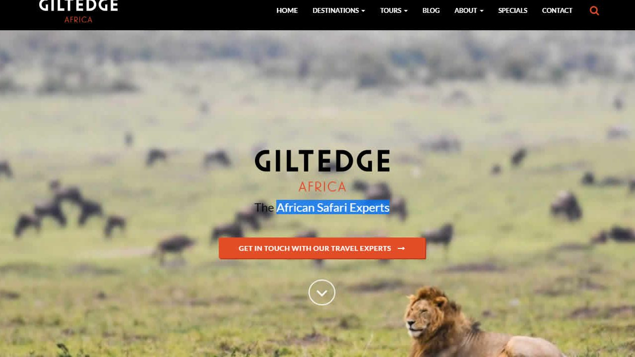 African safari wordpress website