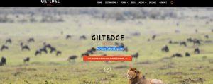 African safari wordpress website