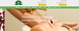 Ayurveda ecommerce WordPress website