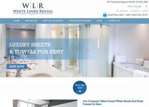 Gowebbaby Web Design Company