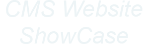 cms website showcase