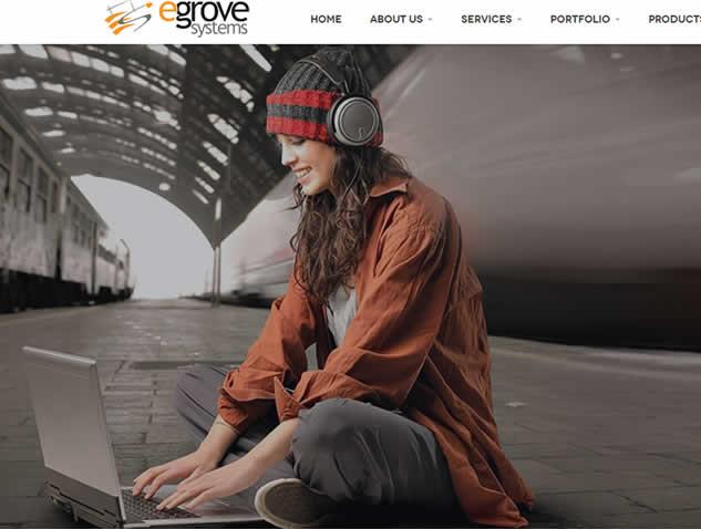 egrove systems web developer