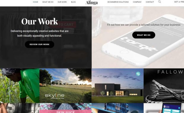 Alinga web designers